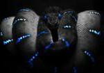 Photoshop blue snake hd wallpaper 1