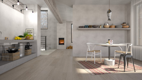 Warm Concrete - Eclectic - Kitchen - by evahassing