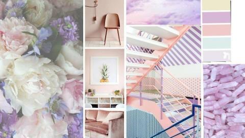 Pink and Purple - by Cristina Mazilu