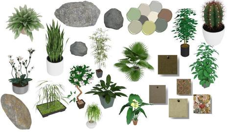 Potted plants and rocks - by Ohtoe