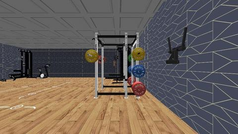 gym not finished - Modern - by Annie2008