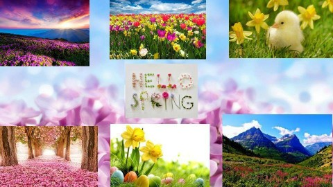 Hello Spring - by Anna Neeb