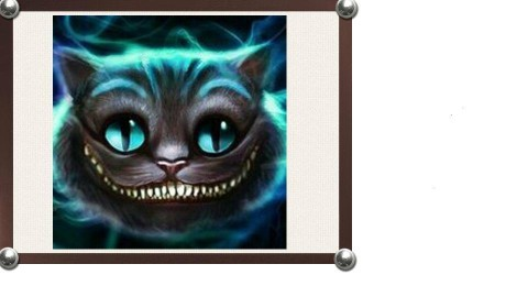 cat - by Jazzmin Walls