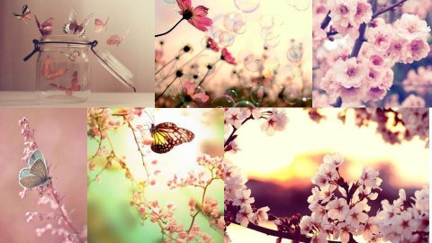 Spring - by Nora Andresen