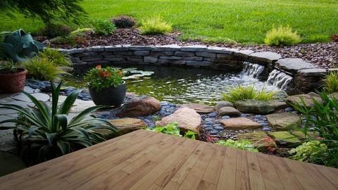 pond  - Garden - by blackdaisies