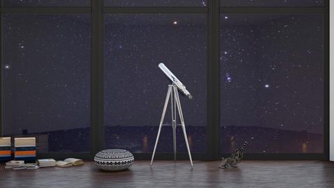 stargazing - Modern - by NEVERQUITDESIGNIT
