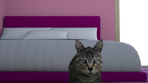 dream bed room - by lhughesRHJ