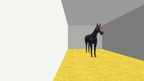 huis - by love horse