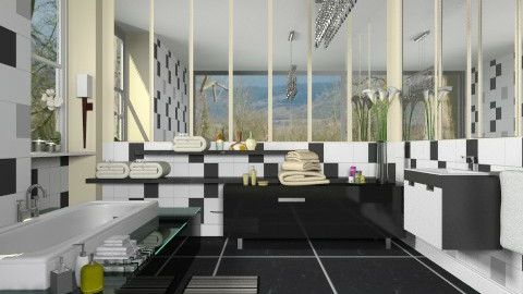 Black Gloss_ Mirrored - Modern - Bathroom - by janip