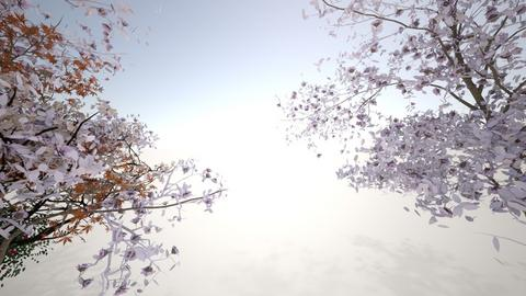 Garden - Garden - by noelisa