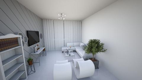 netanel - Modern - Living room - by Netanel radai