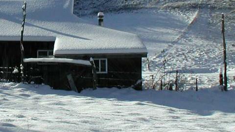 snow look - by ypramestika