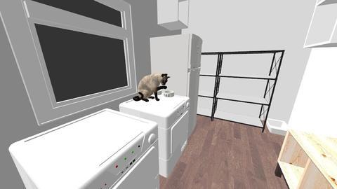 Laundry Room - by tadonahue805