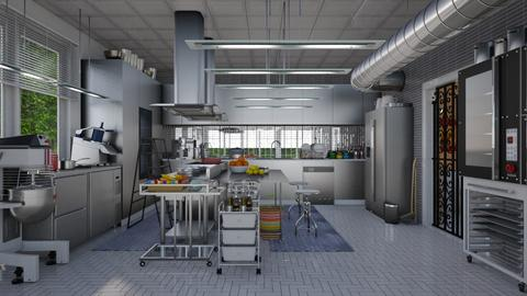 my restaurant kitchen - Modern - Kitchen - by Ida Dzanovic