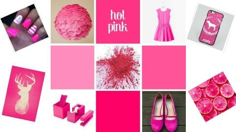 Hot Pink - by Anvitha