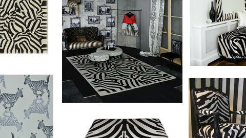 Zebra chic - by matthewmydeco